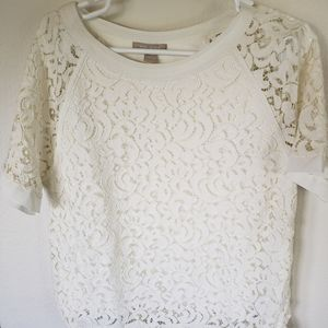 Gorgeous lined lace top